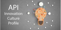 API: Innovation Culture Profile